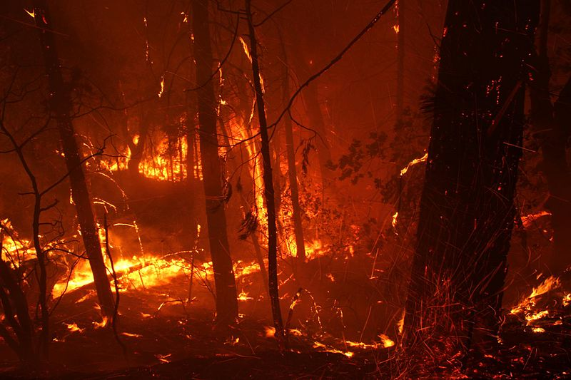 Out of Control Fires in Sequoia National Park Worsen Weather